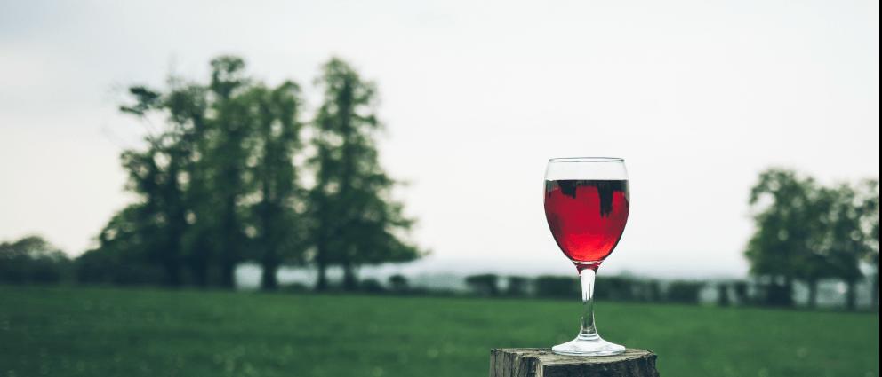 ¿Qué significado tiene regalar una botella de vino?